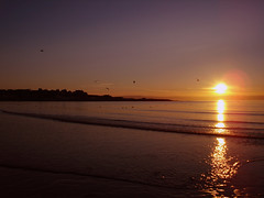 Sunset in Bangor, Northern Ireland (Howard.) Tags: ireland sunset sea sun beach birds yellow evening coast bangor 2006 northernireland northern pleasant