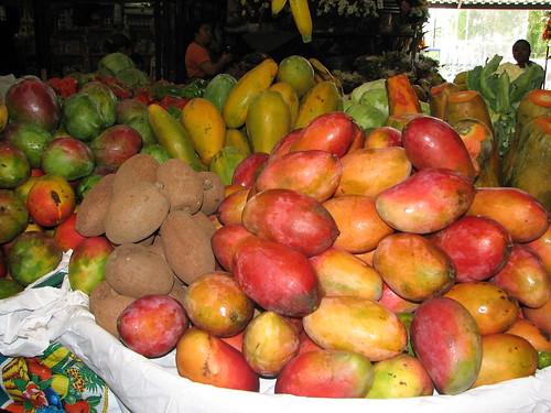 mangos y zapotes.jpg