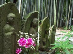 houkokuji statues (michenv) Tags: 2003 japan digital asia kamakura michelle olympus bamboo  nippon digitalcamera orient kanagawa camedia nihon digitalphotos digitalphotography  olympuscamedia camediaseries      olympusdigital olympusc50z michenv olympusx2 houkokuji michenv2003