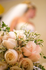 Her Wedding Bouquet (olvwu | ) Tags: pink wedding usa flower macro rose canon ga georgia 50mm bride shannon pinkflower bouquet jungpangwu oliverwu oliverjpwu guyton weddingbouquet flickrexplore 10favs 20favs 30favs explored 100favs 200favs olvwu shannonrogers elamegyptbaptistchurch jungpang