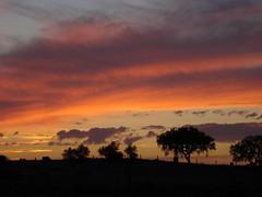 DSC03758 Sunset (zwstr) Tags: sunset portugal alentejo vora