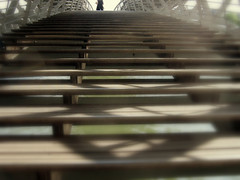 pont solferino (bu.) Tags: wood paris stairs marches pontsolferino enbois