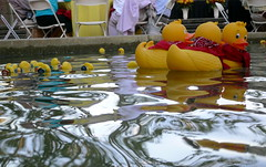 Rubber Ducky Intrigue - by jurvetson