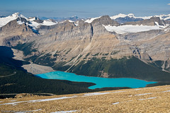 Different View of Peyto Lake From Observation Peak (Marc Shandro) Tags: blue sky lake canada mountains calgary nature rockies outdoors rocky ab alberta banff gettyimages differentview peyto highviewpoint lesscommon