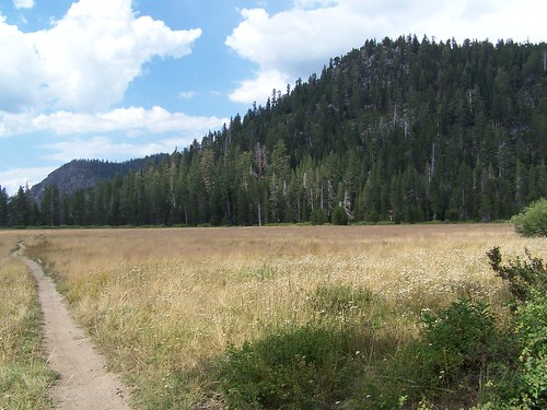 20060813 Big Meadow