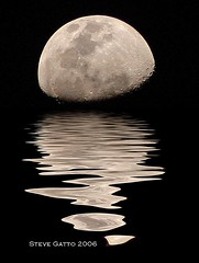 I wanna go there!!!NOW! (steve_steady64) Tags: sea favorite moon reflection 1969 night interestingness nightshot satellite luna topf300 topc100 telephoto soe topf250 topf200 outstanding topf160 outstandingshots thebiggestgroup fav150 300fav bigfave abigfave cotcmostfavorite p1f1 stevegatto stevegatto superaplus aplusphoto topc180 superbmasterpiece diamondclassphotographer flickrdiamond superhearts stevegattofolgarida extremedesign