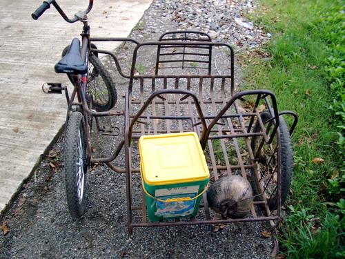 Велосипед коляской своими руками