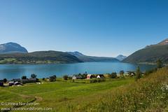 Lavangen Fjord