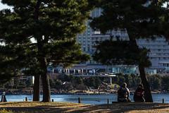 Break at daiba park (th schwarz) Tags: trees japan tokyo break sigma rest odaiba pause fujitv 70200mm28 canoneos60d daibapark
