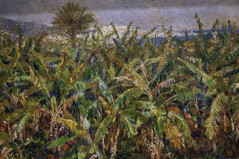 'Field of Banana Trees' by Auguste Renoir (Greatest Paka Photography) Tags: paris france tree art museum painting landscape algeria artist impressionist museedorsay algiers pierreaugusterenoir hamma dorsaymuseum frenchimpressionism champdebananiers essaigarden fieldofbananatrees