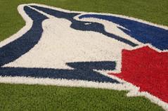Bird On The Field (peterkelly) Tags: toronto ontario canada field digital logo baseball stadium bluejay diamond skydome bluejays northamerica turf mlb torontobluejays rogerscentre