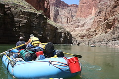 grand canyon2015 225