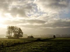 Morning landscape (Wouter de Bruijn) Tags: morning trees nature fog clouds sunrise landscape haze fields fujifilm xt1 fujinonxf35mmf14r
