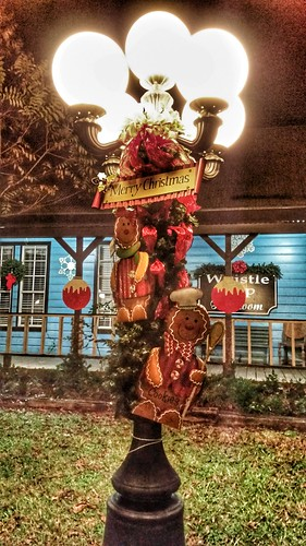 Image result for The Holiday Lamp Post Stroll tomball