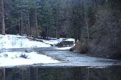IMG_0274 (sdttds) Tags: california mountains roadtrip yosemitenationalpark yosemitevalley yosemitetrip mariposacounty