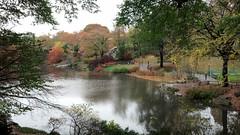 Central Park (ShellyS) Tags: nyc newyorkcity autumn fall centralpark manhattan parks foliage ponds