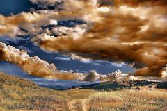 The little road (* landscape photographer *) Tags: sunset italy lake nature colors clouds europe flickr tramonto valle natura valley sa sasi nikkor vivi colori paesaggio salvo gioia lucania 2015 respiro creazione senise nikond90 landscapephotographer sinni salvyitaly lagodimontecotugno