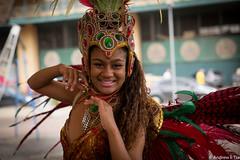 P1002389.jpg (aetse) Tags: city school brazil rio de grande samba 2015 janerio riodejanerio riograndesambaschoolinsambacity