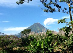 Volcano Arenal (derNubo) Tags: trees america landscape volcano costarica aguaazul arenal alajuela