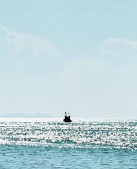 (.AiLinh) Tags: blue sea summer film nature analog 35mm island iso200 natural bluesky natura ishootfilm vietnam analogue analogphotography elan7 analogphoto filmphotography vitnam elan7n eos30v filmphoto filmisnotdead lyson naturaclassica uxi summervibes efiniti uxi200 lysonisland lsn daolyson uxiefiniti lsnisland