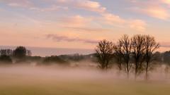 misty morning (aj.lindeboom) Tags: mist landschappen bestpictures voorjaarzomer zonsopkomstondergang najaarwinter