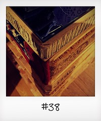"""#DailyPolaroid of 5-11-15 #38 • <a style=""""font-size:0.8em;"""" href=""""http://www.flickr.com/photos/47939785@N05/23703930606/"""" target=""""_blank"""">View on Flickr</a>"""