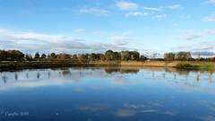 Kom  Grand Canal Kasteel Renswoude. (Cajaflez) Tags: vijver grandcanal renswoude trees bomen reflections reflecties spiegelingen blue sky clouds wolken lucht coth5