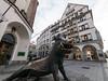 Hog Hunt (H.H. Mahal Alysheba) Tags: munich münchen wide street urban museum lumix gx7 lumixg 714mmf40