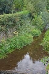 2012.09.03.066 RIBEAUVILLE - La Strenbach (alainmichot93 (Bonjour à tous - Hello everyone)) Tags: 2012 france alsace hautrhin ribeauville architecture rivière eau water