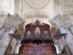 03.10.2016 - Cadix, cathédrale et alentours (195) (maryvalem) Tags: cadix espagne spain cathédrale alem lemétayer lemétayeralain orgues