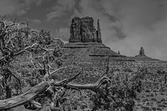 The Left Mitten in Black and White (Kool Cats Photography over 8 Million Views) Tags: landscape monumentvalley arizona butte leftmitten navajotribalpark