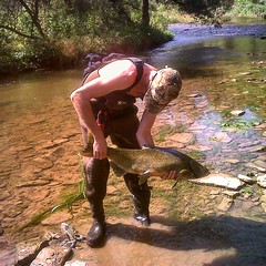 Squirmy bugger (Ontario_BWO) Tags: squirming big fish fishing bronte creek outdoors ontario