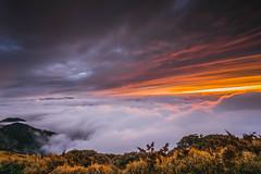 合歡山 (王宇信) Tags: taiwan nantou sunset moutain cloud 台灣 南投 合歡山 夕陽 日落 sony a6000 雲 風景 火燒雲 e16 sel16f28 雲海 主峰 武嶺