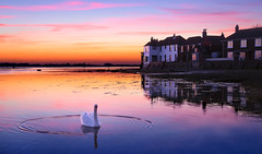 Swan Dance (Solent Poster) Tags: swan dance bosham pentax k1 2470mm sunset sunrise
