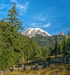 Rainier Pastoral (Philip Kuntz) Tags: mtrainier mtrainiernationalpark fence splitrailfence zigzagfence mountains volcanoes washington boxcanyon muddyforkofthecowlitzriver