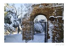 (artùro_simone beato) Tags: neve winter snow fermo inverno parco ghiaccio