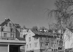 PEM-ROG-00073 Vestregata (Perspektivet Museum) Tags: rognmosamlingen woodenhouse norge arkitektur architecture vestregata trehus tromsø perspektivetmuseum nordnorge noreg norway norwegen troms nor