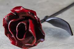 Prague Mini Rose -Macro (nicolasherhod) Tags: macromondays madeofmetal prague rose iron