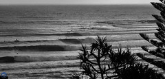 Pumping Silhouette (Moore_Imagery) Tags: surf surfer surfing wave waves lines barrel barrels tubes snapper snapperrocks coolangatta cooly coast goldcoast goldy australia qld queensland winston cyclone swell ocean rocks sand beach beautiful landscape photography 2016