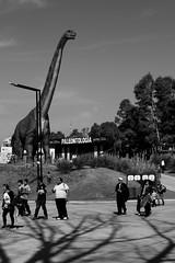 (martinnarrua) Tags: people bw white black byn blanco argentina nikon gente buenos aires negro bn personas amateur tecnopolis dinosaurio monocromtico nikond3100