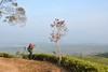 Nini Hill, Malabar (iqronaldo) Tags: fish west garden java fisherman mess tea farm web hill nini teh bandung jawa waduk rumah malabar barat pangalengan danau situ boscha bosscha cileunca belanda nusantara perkebunan cisanti cipanunjang