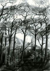 de_horsten_-_23-10-15_(2015)_(550_x_778) (corne.akkers) Tags: park trees light en sun white black holland art netherlands dutch pencil dark de landscape la licht al bomen die shadows view south fine arts nederland dal el boom hague un le uno valley una vista das hatch crayon haag der nederlands clair graphite bleistift une artista donker hatching artiste obscur zuidholland clairobscur cubismo potlood arceren corne horsten southholland cubistic akkers kubist awardtree arcering grafiet
