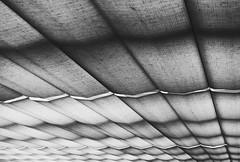 Felderflug (Bernd Kretzer) Tags: abstract blackwhite nikon 1855mm schwarzweiss afs abstrakt dx sunblind markise linescurves zoomnikkor 13556g