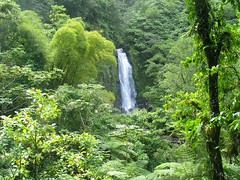 Trafalgar falls, Dominica. Photo provided courtesy of Discover Dominica Authority.