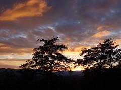 Smoky Mountains Sunset (ShanMcG213) Tags: travel family trees sunset vacation sky clouds nationalpark tn hiking tennessee roadtrip nationalparkservice smokymountains fallbreak smokymountainnationalpark thegreatsmokymountain skyglory