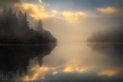 The Second Day (GenerationX) Tags: trees mist water silhouette fog sunrise reflections landscape dawn mirror scotland shadows cross unitedkingdom ducks scottish neil calm gb marker trossachs barr gloaming aberfoyle lochard nohorizon kinlochard lochardforest canon6d