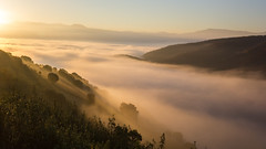 El despertar (Qasar Rasaq) Tags: autumn espaa fog forest sunrise landscape spain paisaje amanecer bosque otoo len niebla bierzo castillaylen elbierzo corulln