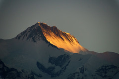 Annapurna II 7937m (Poxxel) Tags: nepal sunrise sonnenaufgang sarangkot annapurnaii
