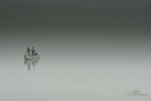 Insieme fusi nella nebbia cielo e acqua