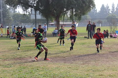 2016-12-10 12.52.48 (PlayRugbyUSA) Tags: action running attacking boys